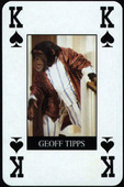 P.G. Tips Card Game Trick Cards 1995