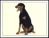 Dogs Dobermann 1999