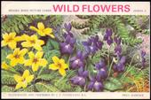 Wild Flowers Series 3 Special Album 1964
