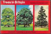 Trees in Britain Re-issue Special Album (Glossy cover without price)