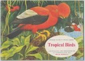 Tropical Birds Original Special Album (Matt cover with price)