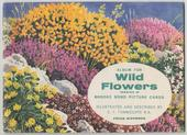 Wild Flowers Series 2 Original Special Album (Matt cover with price)