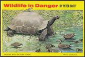 Wild Life in Danger Re issue Special Album (Glossy cover with price)