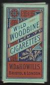 Wild Woodbine (Green and orange scroll design) empty 10s cigarette packet c1940