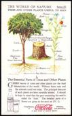World of Nature Series 3 Trees and Other Plants Useful To Man c1960