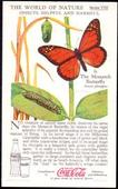 World of Nature Series 8 Insects Helpful and Harmful c1960