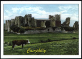 Castles in Britain in The 20th Century 2nd Series 2010
