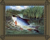 The Art of Angling 1st Series 1997