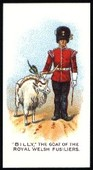 Regimental Pets 1911 (reprint 1998)