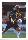 Europes Best Goalkeepers 1992
