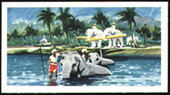 The Island of Ceylon 1961