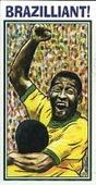 Brazilliant The Story of Pele (Footballer) 2001