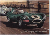 Jaguar at Le Mans (numbered 029-032) 1995