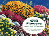 Wild Flowers Series 2 Reprint Special Album (glossy cover without price)