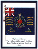 Infantry Regimental Colours The Royal Munster Fusiliers 2010
