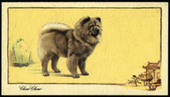 Dogs captions in script letters 1934
