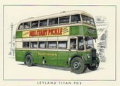 Buses in Britain 1950s (2005)
