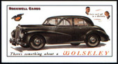 Family Cars of the 1950s (2000)