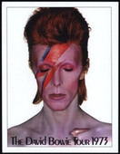 David Bowie Concert Posters 2010