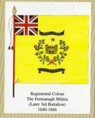 Infantry Regimental Colours The Royal Inniskilling Fusiliers 1st Series 2005