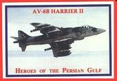 Heroes of The Persian Gulf 1991