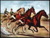 Trotters (American Style Horse Racing) 2006