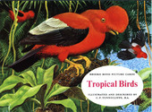 Tropical Birds Reprint Special Album (without price and printers credit)