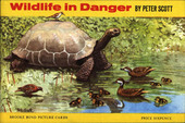Wild Life in Danger Original Special Album (matt cover with price sixpence)
