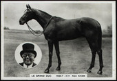 Racehorses and Sports Photocards Group A 1937