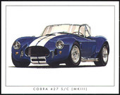 Cobra The Sports Car 1962-69 (1996)
