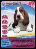Happy Puppy Your Best Friends (game cards) c1995