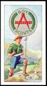 Boy Scout Badges 1939